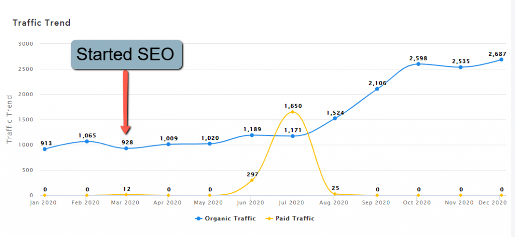 Graph of SEO traffic to Shopify store in 2020.
